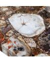 Обеденный стол Petra 230x107cm (арт.450228-00)