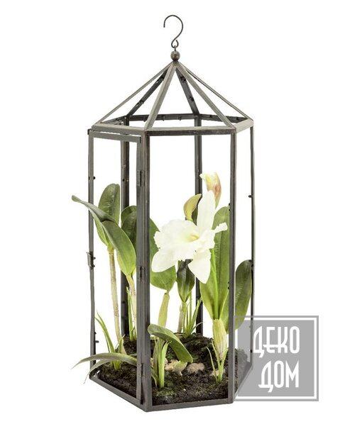 ABHIKA | Декор Orchid Cattleya Soil H58cm (арт.210191-10) фото | ✆ +38(067)3-999-700 | Цена в Украине | Оригинальный декор для дома |