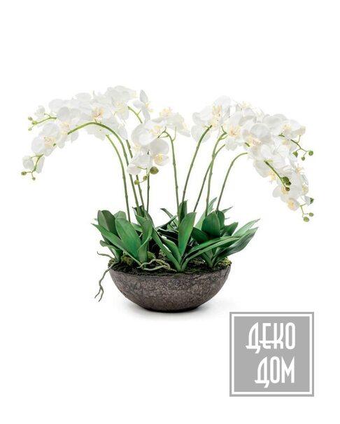ABHIKA | Декор Orchid on Soil H66cm (арт.210235-10) фото | ✆ +38(067)3-999-700 | Цена в Украине | Оригинальный декор для дома |