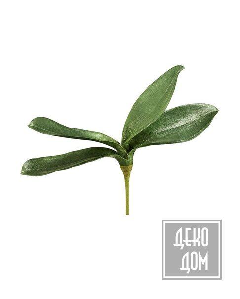 ABHIKA | Декор Leaf Phalenopsis H25cm (арт.210300-70) фото | ✆ +38(067)3-999-700 | Цена в Украине | Оригинальный декор для дома |